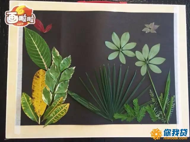 刚学画画时 卡卡只会画简单的线条 画的花朵,只有花瓣,没有花蕊 画